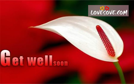Get well soon hindi messages, get better soon wishes image