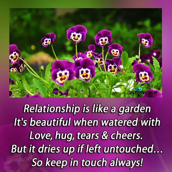 Genial Relationship Is Like A Garden Love Quote