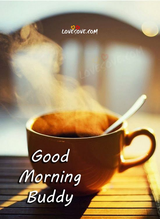Lovesove Good Morning Wallpaper : Good morning buddy wish LoveSove.com