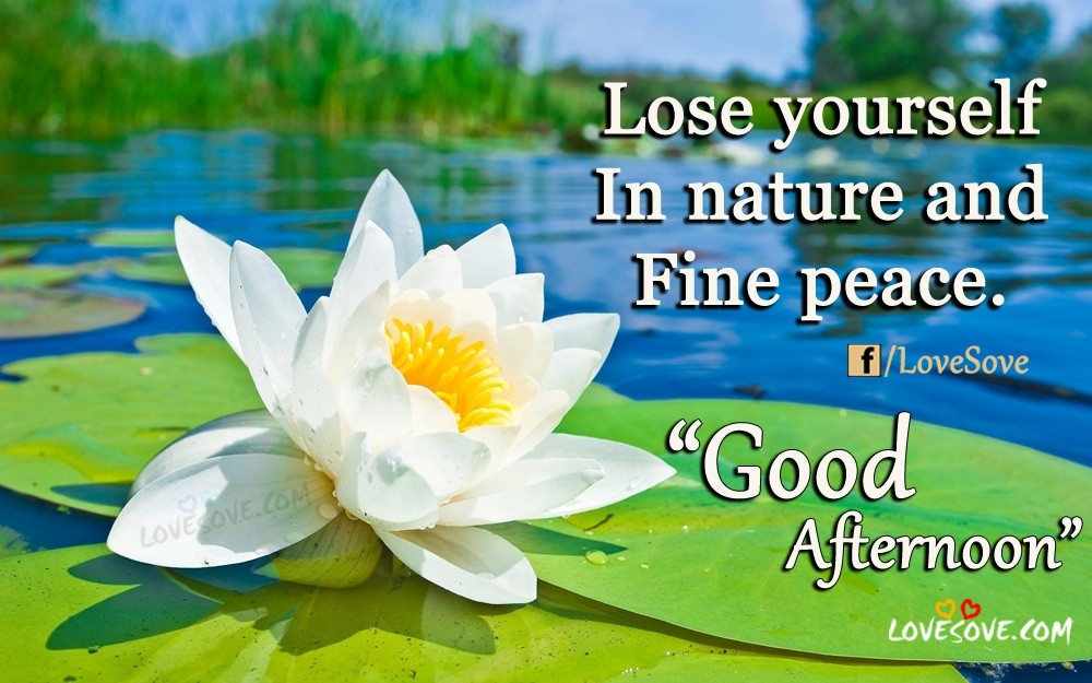 lose yourself in nature good afternoon quotes for friends