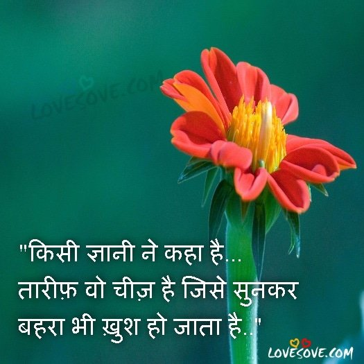 Good Morning Image With Life Thought In Hindi
