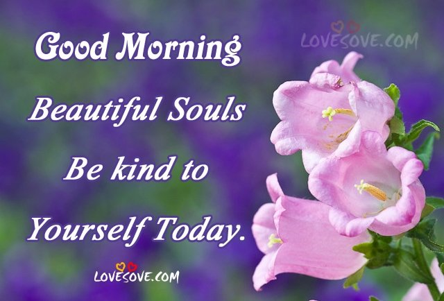 Good Morning! Beautiful Souls Be kind to yourself today