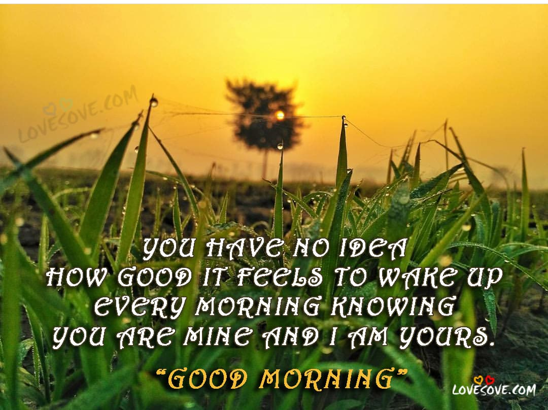 Quotes Morning Good Morning Cards