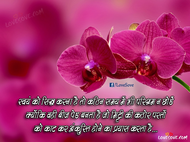 Sweyam Ko Siddha Karna Hai - Hindi Life Quotes Images, Suvichar Images For Facebook, Best Suvichar Images For WhatsApp Groups, Good Life Quotes Wallpaper
