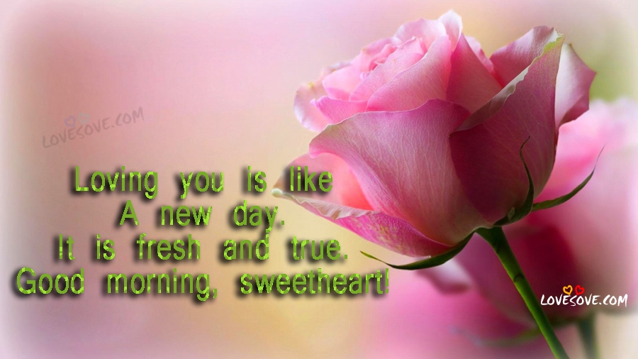 loving you is like good morning wishes images