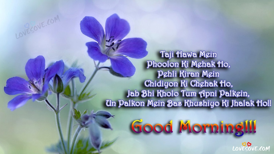 Taji Hawa Mein Phoolon Ki Hindi Good Morning Wishes Images