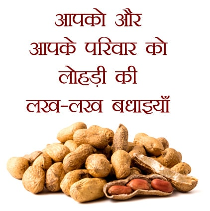 Lohri-Wishes-in-Hindi-Language