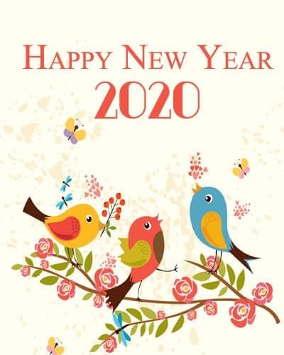 Cute-New-Year-2020-DP-with-Bird-Pics-LoveSove