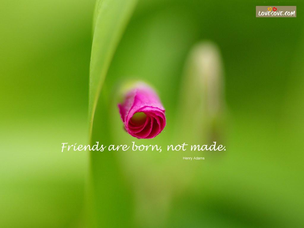 friendship_wall_039   ...