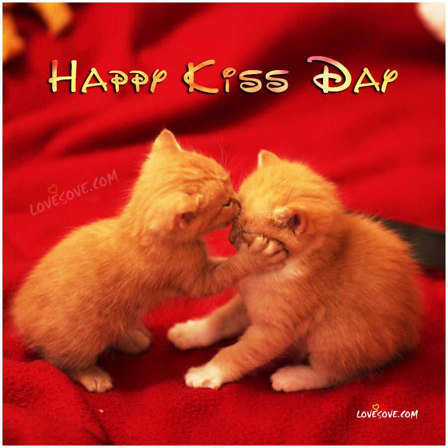 happy kiss day 2018 status quotes, kiss wallpaper with shayari