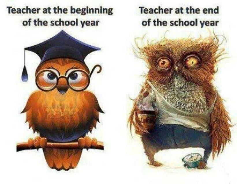 funny teachers day wishes, Happy Teachers Day Funny Quotes, Images for teachers day funny status, Images for funny teachers status, funny teacher sayings