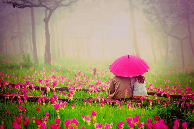 cute-couple-lovers-umbrella-lovesove