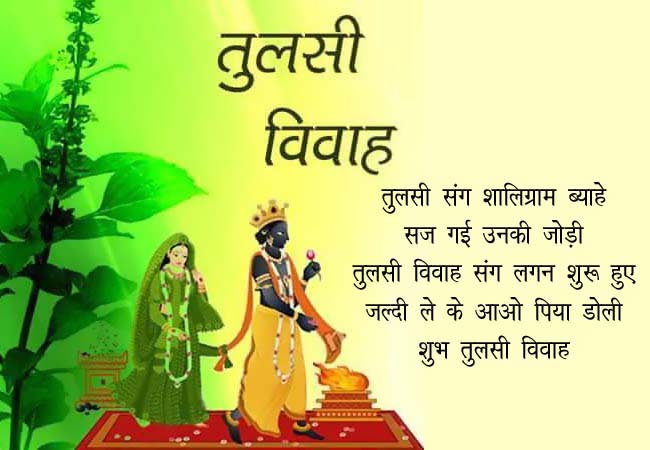tulsi pooja wish in hindi, tulsi pujan status in hindi, tulsi shayari in hindi, tulsi vivah akadashi wishes, Tulsi vivah hindi quote, Tulsi vivah funny sms, Tulsi vivah hindi sms, tulsi vivah hindi wises, tulsi vivah image sms
