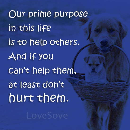 Our prime purpose in this life- True Life Quote