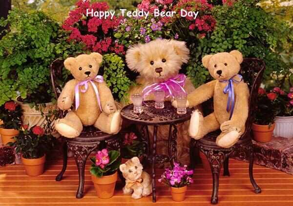 Happy Teddy Day 2017 Status Shayari, Teddy Bear Pics Images cute-teddy-bear-day
