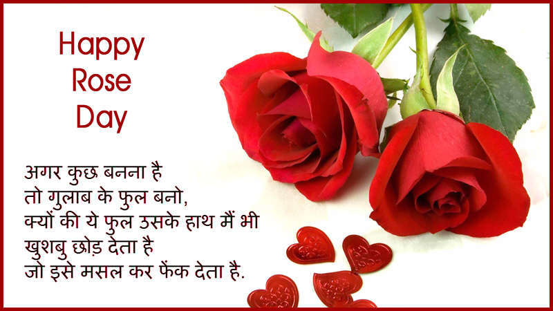 Image result for rose day greetings
