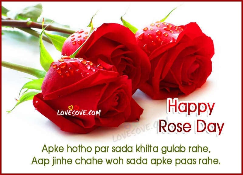 Happy Rose Day 2017 Whatsapp Status, Rose Shayari Images & Quotes rose-day-status--images-for-whatsapp-lovesove
