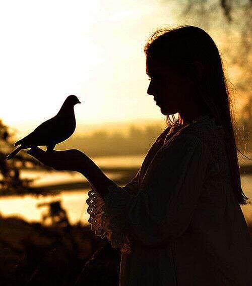 intezaar shayari, girl-missing-lover-pigeon-in-hand-lovesove