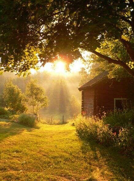 morning-sun-shine-lovesove