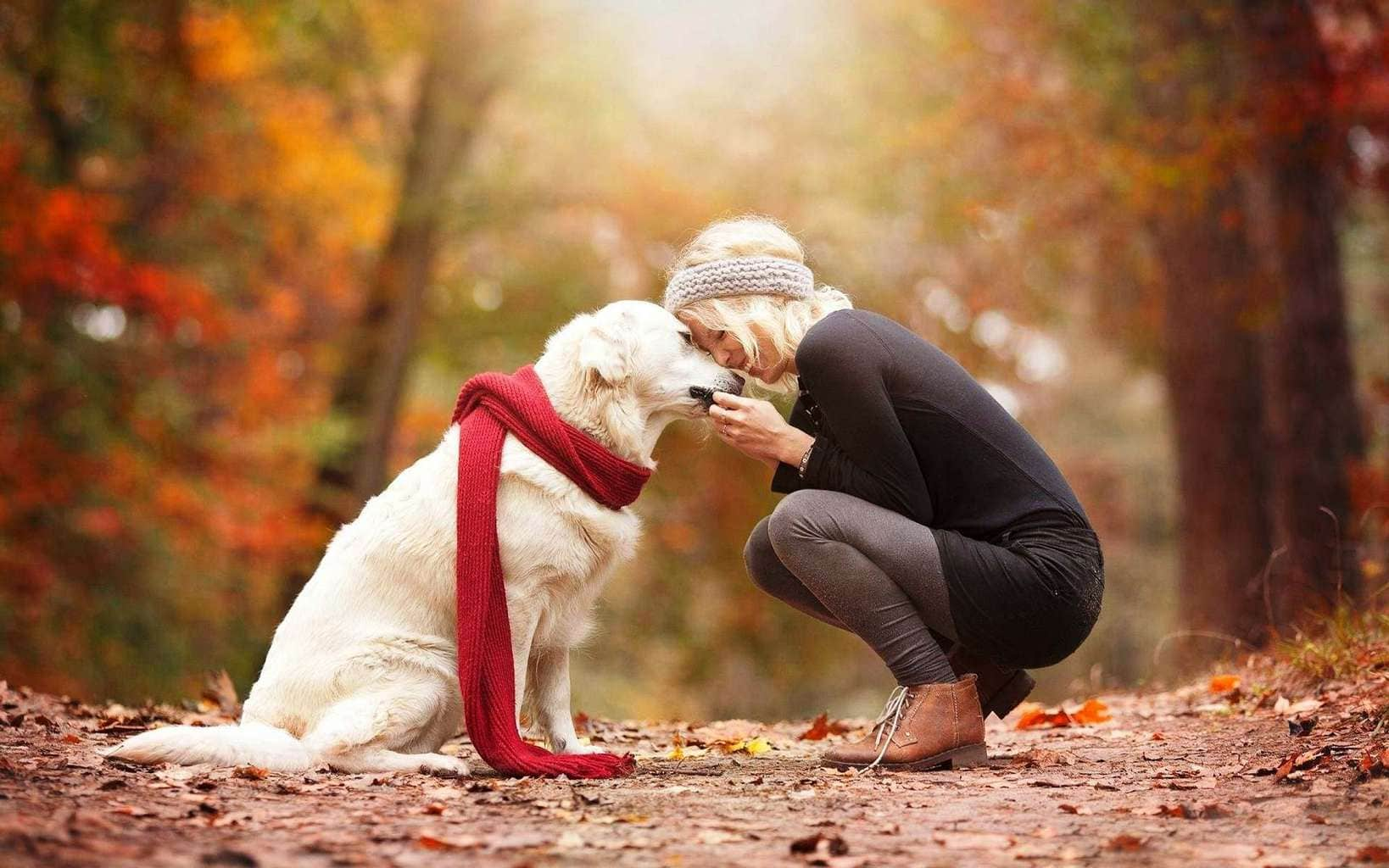 Animal & Human Friendship Images Wallpapers Wallpapers
