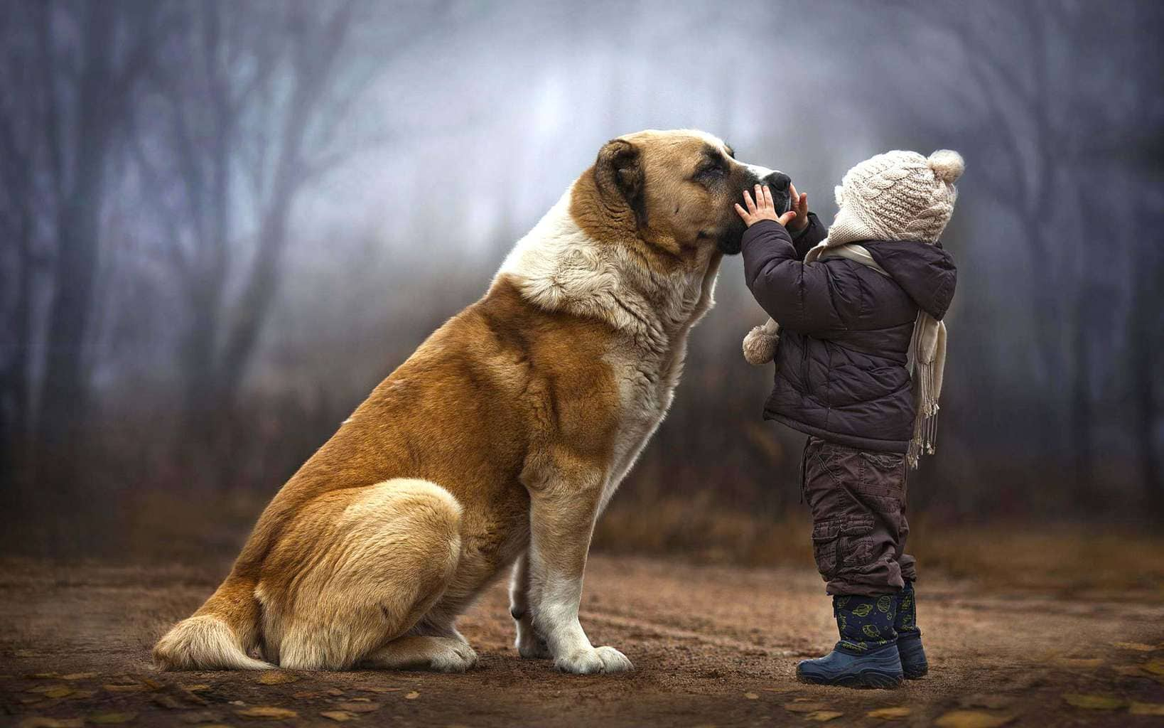 Cute-baby-and-dog-friendship-wallpaper