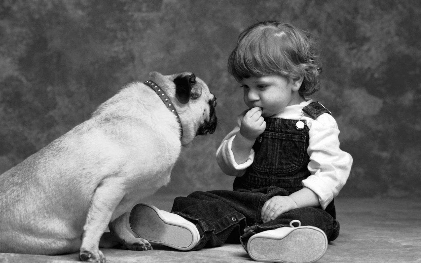 Dog-and-baby-friendship-wallpapers