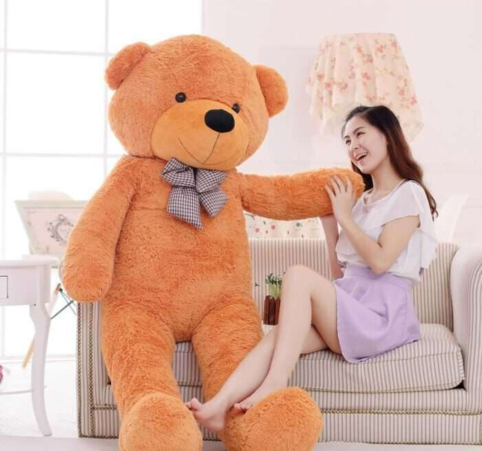 teddy-bear-cover-photo, teddy-bear-day, cute-teddy-bear-cover-photos-for-facebook, Cute Teddy Day Photos for FB Whatsapp, Cute Teddy Images for 10th February, Teddy Day Wishes, Cute Teddy Bear Day Images, Teddy Day Images for Whatsapp,
