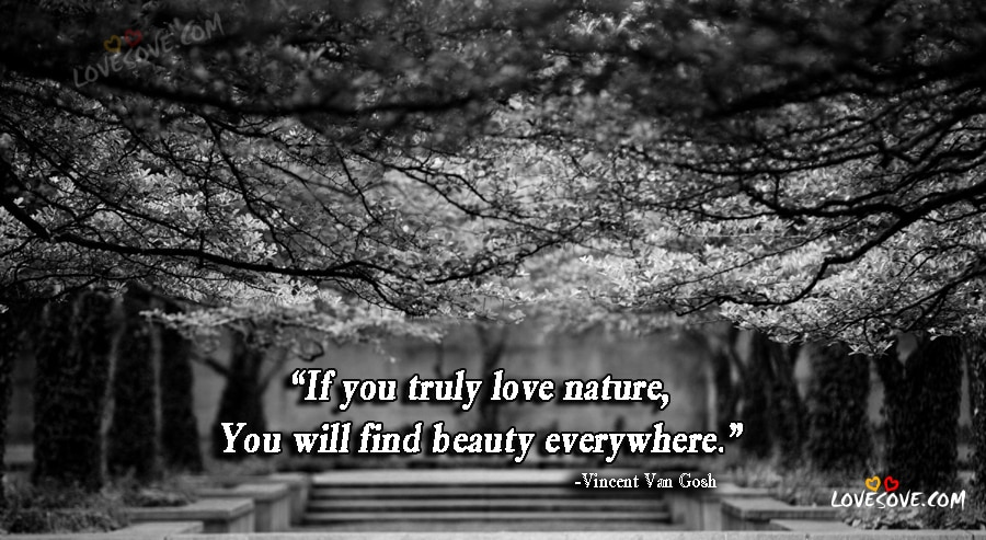 Nature Quotes, Nature Images, Nature Wallpapers, Nature Background, Nature Quotes Image For Facebook, Nature Quote Images For WhatsApp Status, Black & White Nature Wallpaper And Images, Beautiful Nature Images
