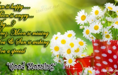 Sorry Good Morning Messages For Brother