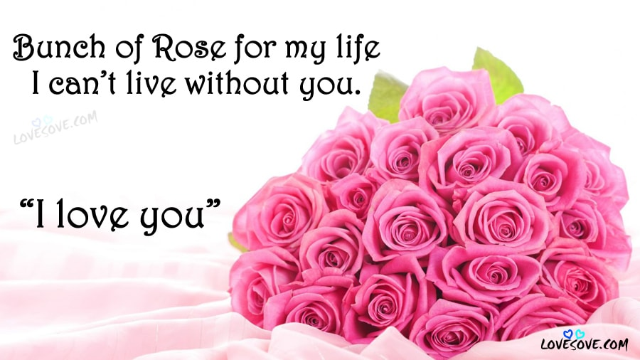 Happy Rose Day Quotes, Status, Images, Pics, Wallpapers, SMS 2019
