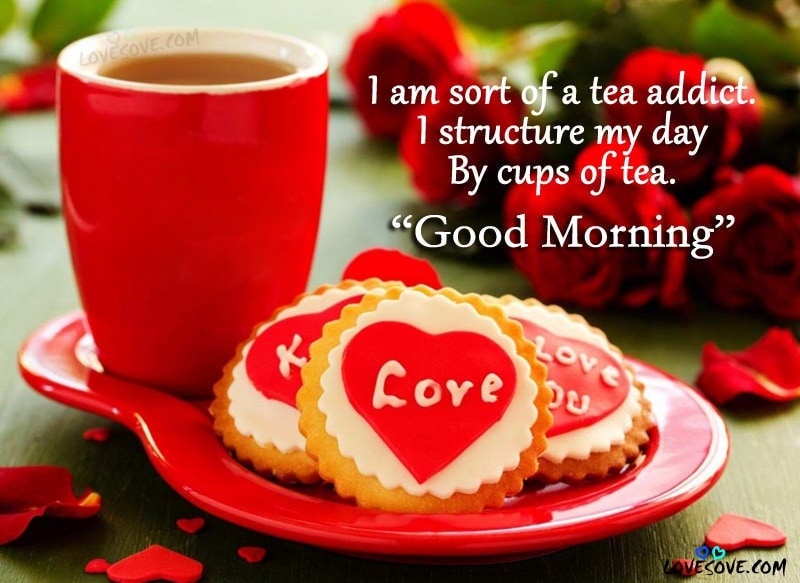 I am sort of a tea - Good Morning Quotes wallpaper, Best Good Morning Shayari For Friends & Family, Good Morning & Tea Quotes, Good Morning Quotes Images, Good Morning Message, Good Morning Quotes Wallpapers For Facebook, Good Morning Shayari For WhatsApp, Tea Quotes For tea lover, Tea Quotes Wallpapers
