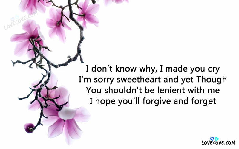 20 Best Im Sorry Quotes Status Images English Maafi Quotes