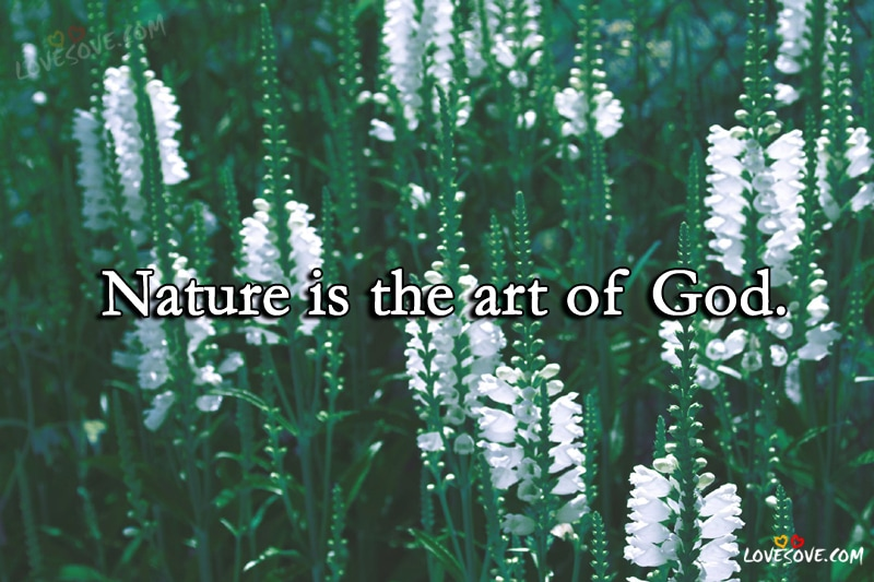 Nature Is The Art - Nature Quotes, Nature Wallpapers, Nature Background, Nature Quotes Image For Facebook, Nature Quote Images For WhatsApp Status, Nature Images, Nature Lovers, Mother Nature Quotes, Best Nature Quotes Ever