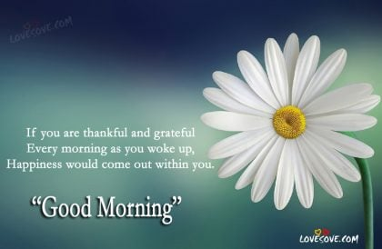 If You Are Thankful   Good Morning Quote, Happiness Quotes, Best Good  Morning Quotes