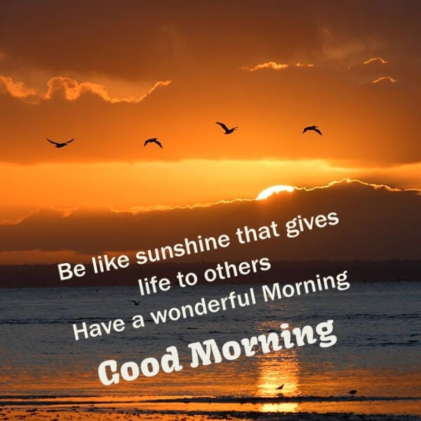 have a wonderful morning quotes