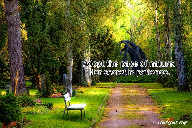 Adopt The Pace Of Nature - Best Nature Quotes Images, Nature Background, Nature Quotes Image For Facebook, Nature Quote For WhatsApp Status