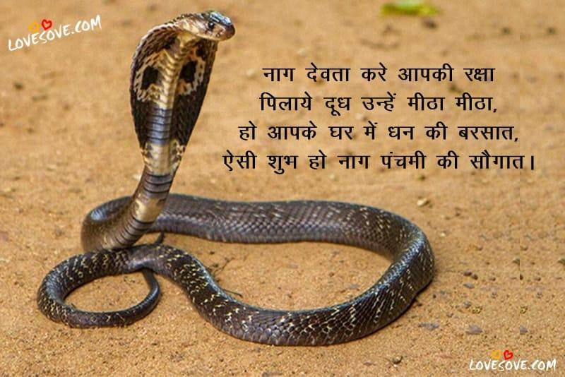 नागपंचमी शायरी, Images for नागपंचमी शायरी, बेस्ट नागपंचमी कोट्स, Images for नागपंचमी शुभकामनाएं, नागपंचमी की शुभकामनाएं Images, नाग पंचमी स्टेटस, Happy Nag Panchami Wishes In Hindi, Nag Panchami Ki Shubhkamnaye For Facebook & WhatsApp, Happy Nag Panchami wishes in english
