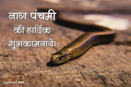happy nag panchami wishes in hindi, nag devta ke photo
