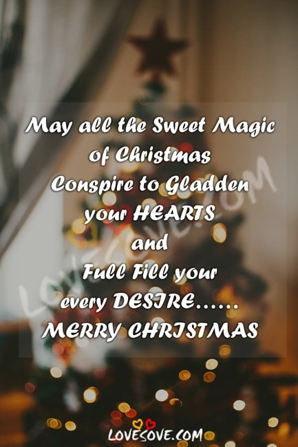 christmas shayari pic, christmas shayari wallpaper, christmas photo shayari, christmas love shayari, Christmas love shayari, christmas hindi SMS