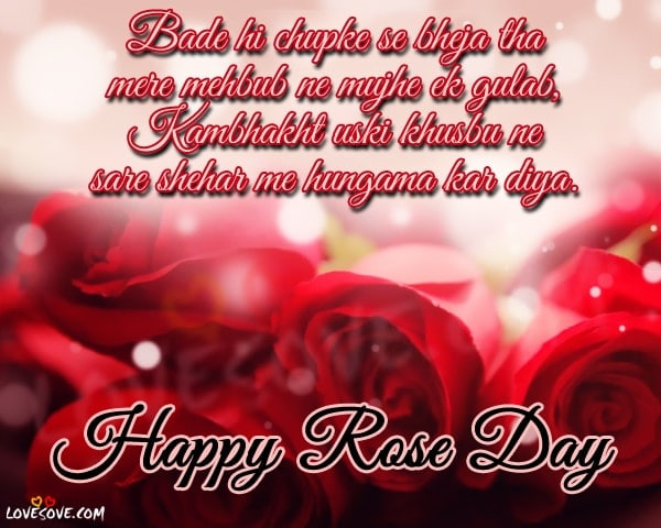 Happy Rose Day Shayari Images Rose Day Wallpapers