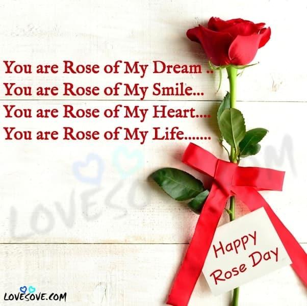 rose day shayari, happy rose day, happy rose day shayari, red rose shayari in english, rose day quotes, rose day status, rose day two line shayari, rose day my jaan, happy rose day images with quotes, happy rose day meri jaan images, quotes on rose day, red rose image shayari, rose day romantic shayari, rose day shayari for girlfriend in hindi, rose day status 2 line, rose day wallpaper, best wishes for rose day in hindi, happpy rose day cute status, happy rose day 2 lines, happy rose day 2020 hd photo, हैप्पी रोज डे शायरी, लाइन फॉर रोज डे