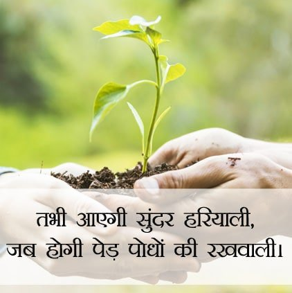 Beautiful Nature Quotes Images Nature Hindi Status For Whatsapp