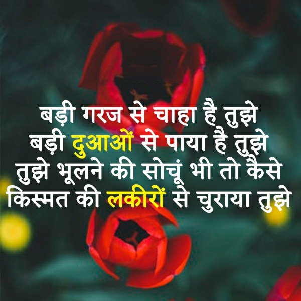cute shayari for facebook, cute shayari for wife in hindi