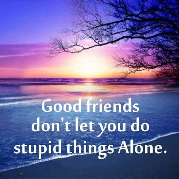 latest whatsapp status for friendship in english