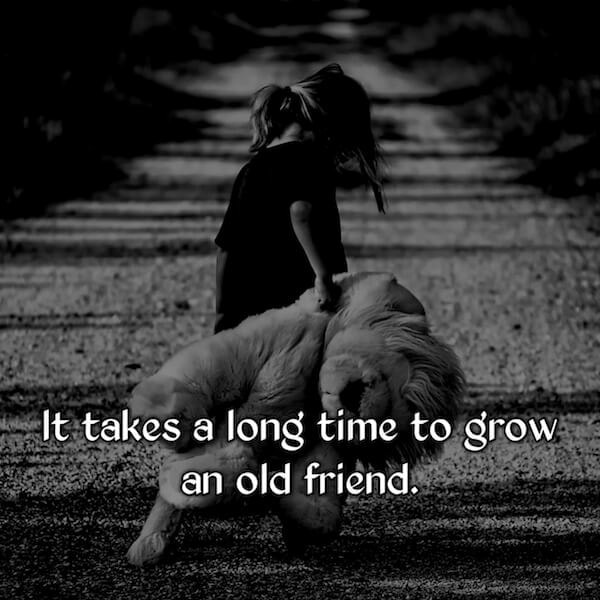 short and sweet friendship quotes, friendship quotes in english