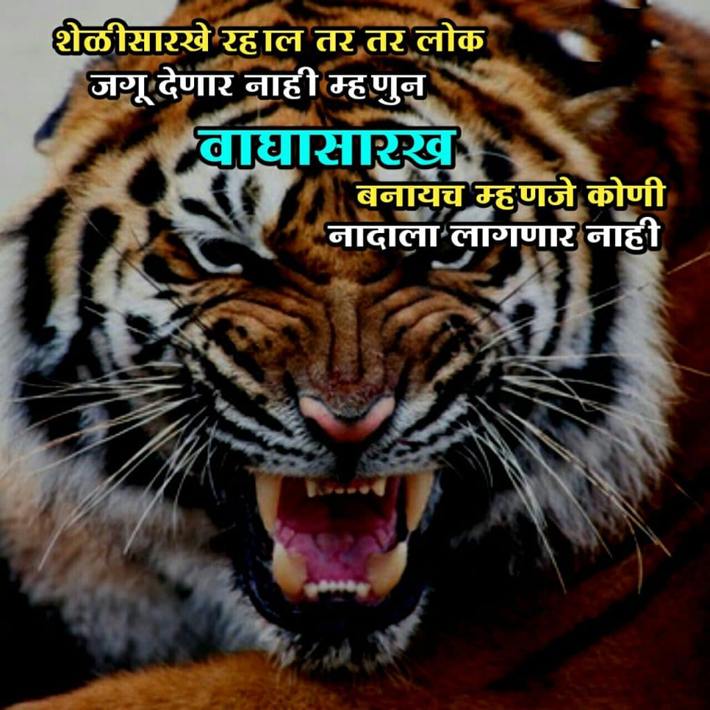 quotes good thoughts in marathi, motivational sms in marathi for success, motivational quotes in marathi for success