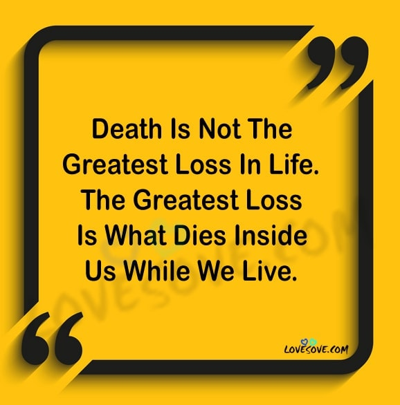 Best Facts About Love Life Quotes True Fact Of Life