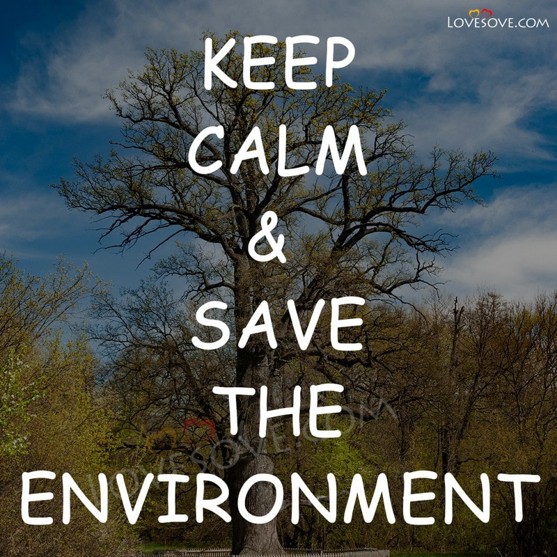 world environment day, world environment day 2020, world environment day quotes, world environment day 5 june, world environment day 2020 slogan, world environment day event
