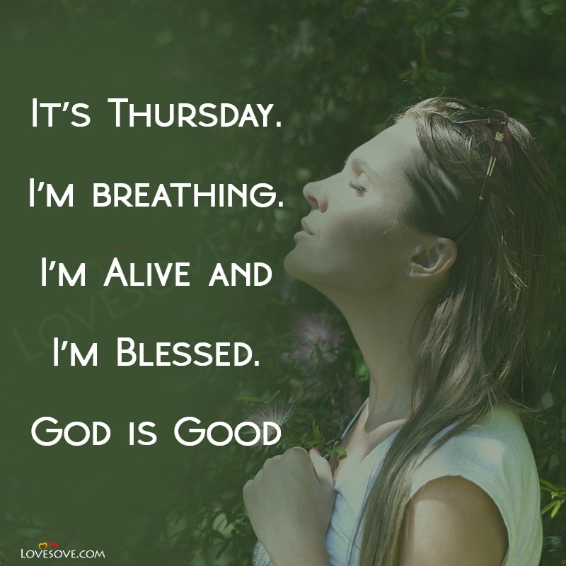 happy thursday, happy thursday status, happy thursday quotes, happy thursday cute morning, happy thursday status images