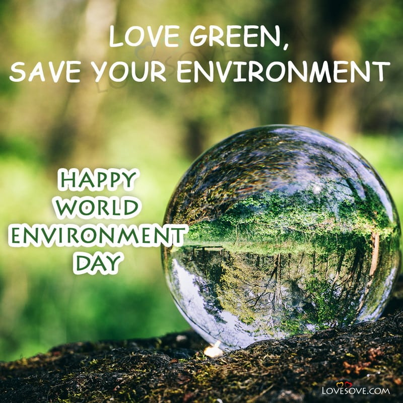 world environment day twitter, world environment day images with quotes, world environment day message, world environment day whatsapp status, world environment day hd images, world environment day photos, world environment day wishes images